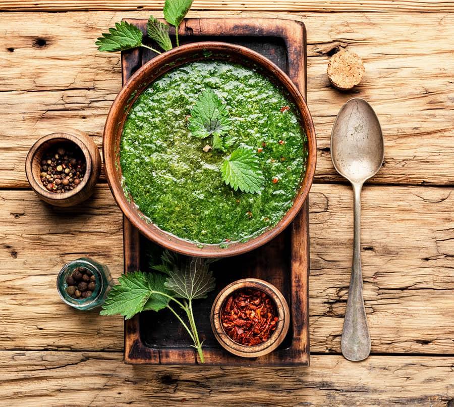 Bulgarian Nettle Soup